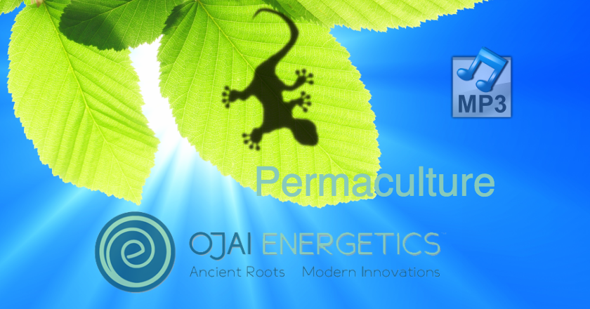 Ojai Energetics Permaculture Business and Products