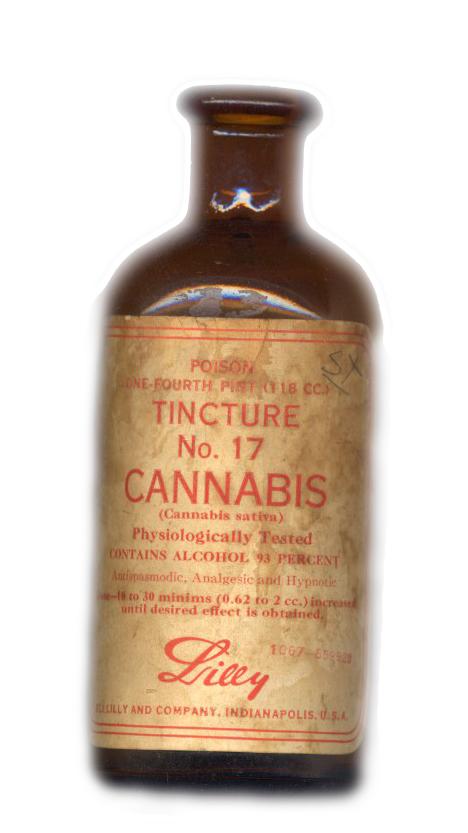 lilly_cannabis_tincture_crop