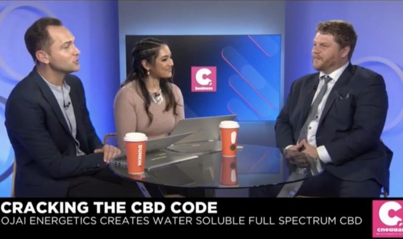 Cheddar Interview: Will Kleidon Cracks the CBD Code