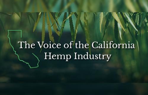 Will Kleidon Named Chairman of California Hemp Council