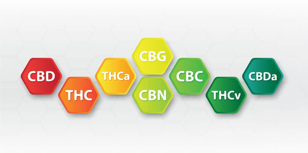 What is the benefits of CBG