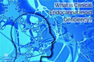 Endocannabinoid Deficiency: What it is and How you can treat it